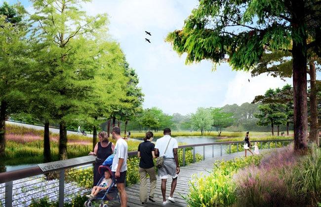 Wetland Pond & Boardwalks