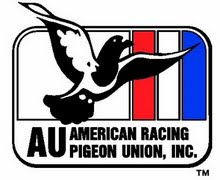 Pigeon relay race to bring awareness to veterans