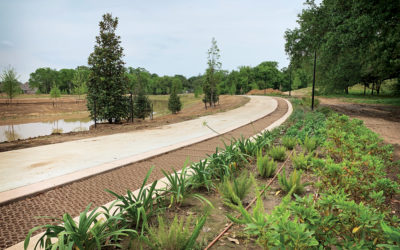 A glimpse into the work happening at Moncus Park…