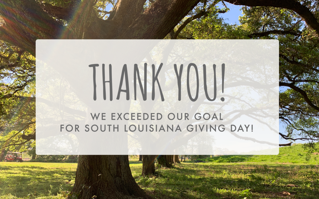 We Blew Through Our SOLA Giving Day Goal